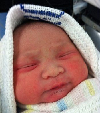 Elodia, beberapa saat setelah lahir